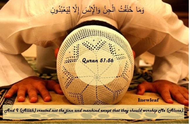 QURAN 51:56 Surat Adh-Dhariyat [verse 56]